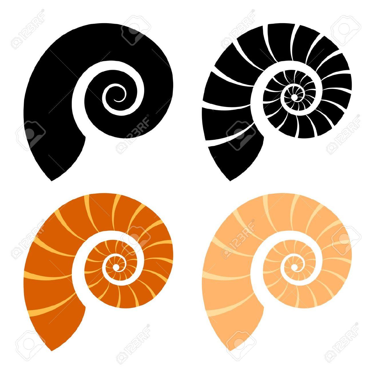 1300x1300 Snail Seashell Clipart, Explore Pictures