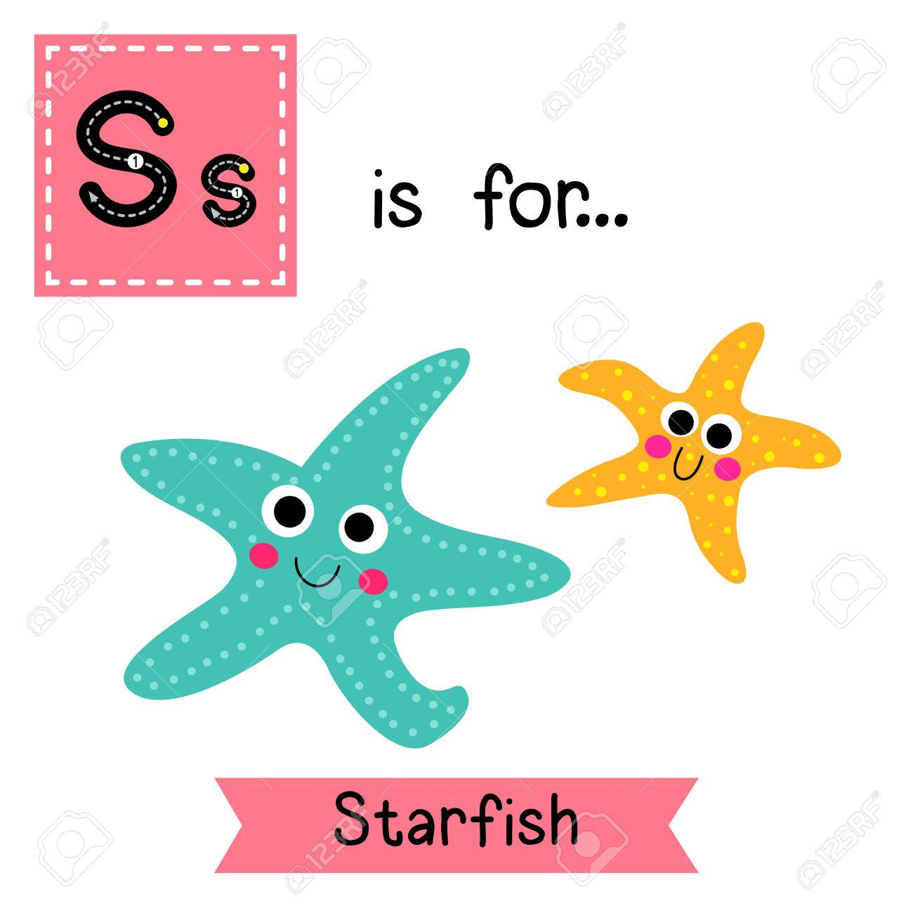 1300x1300 66 Sea Star Abc Stock Vector Illustration And Royalty Free Sea