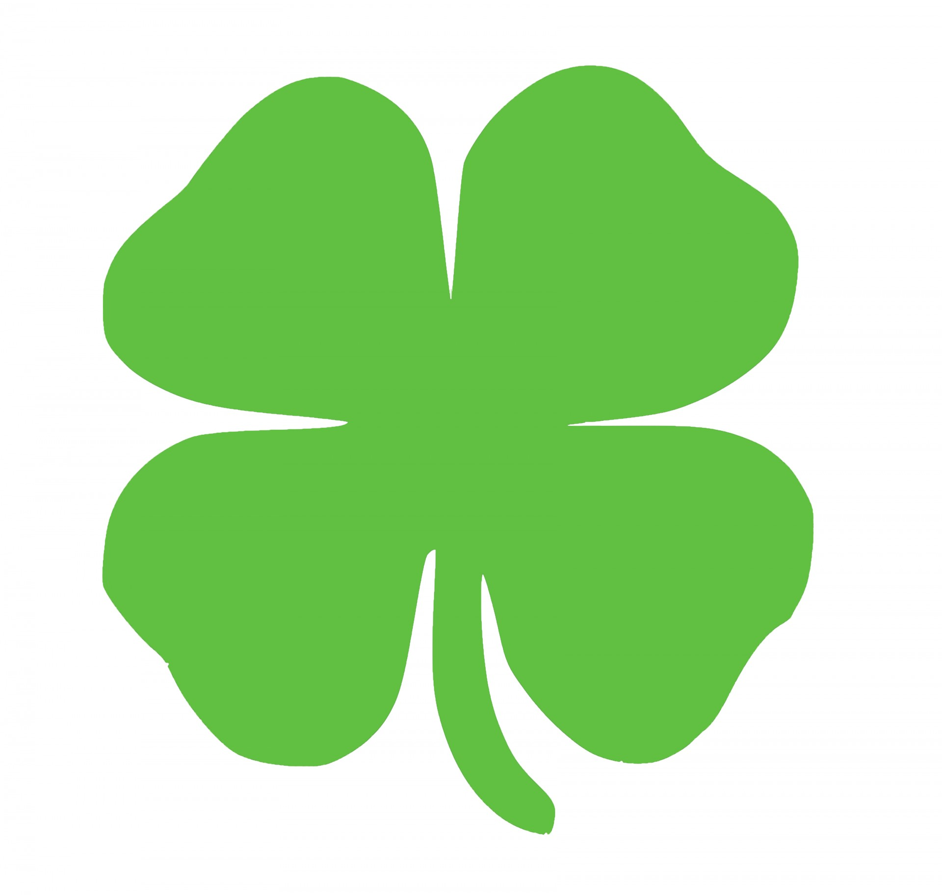 1920x1824 Shamrock For St Patrick's Day Free Stock Photo