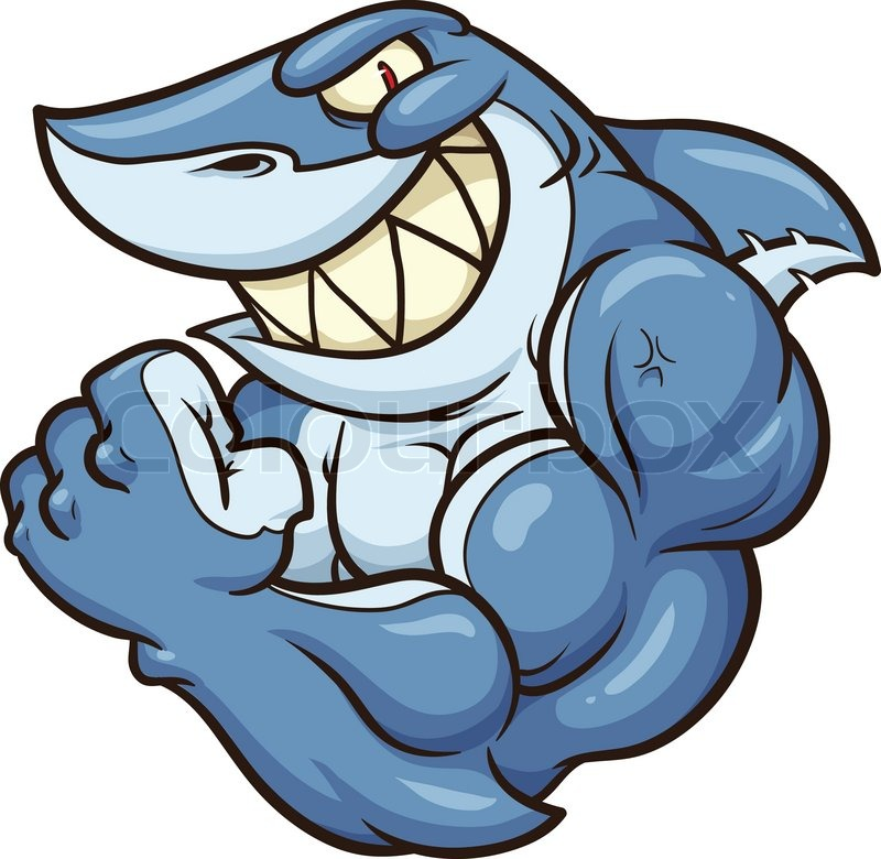 800x780 Cartoon Shark Mascot. Vector Clip Art Illustration With Simple
