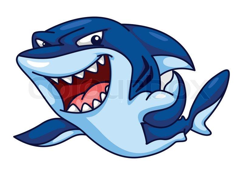 800x575 Shark Funny Cartoon Stock Vector Colourbox