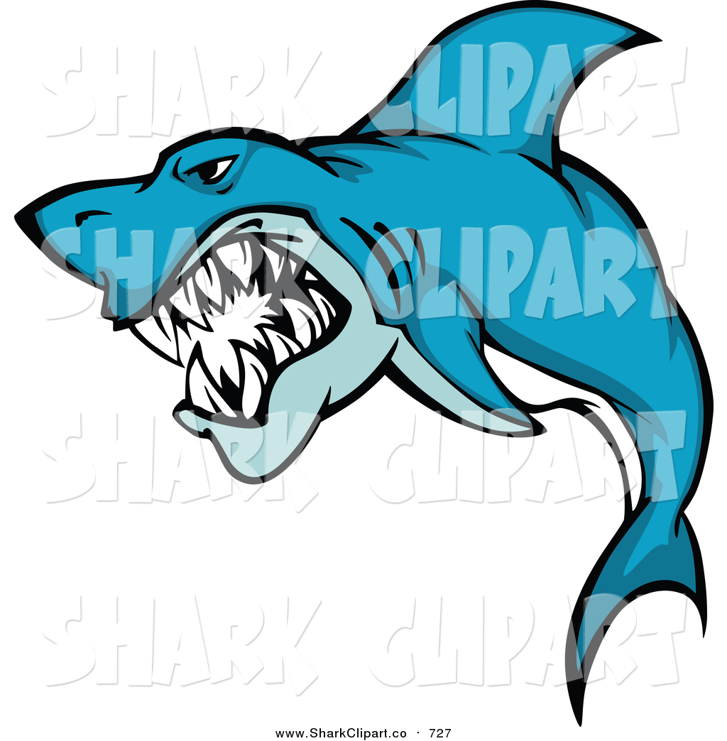 1024x1044 shark clip art