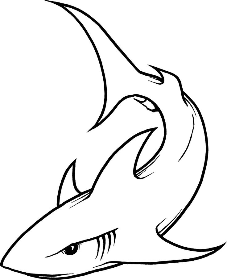 736x907 Shark Clip Art Cute Free Clipart Images