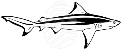 400x165 Bull Shark Clipart Shark Fish