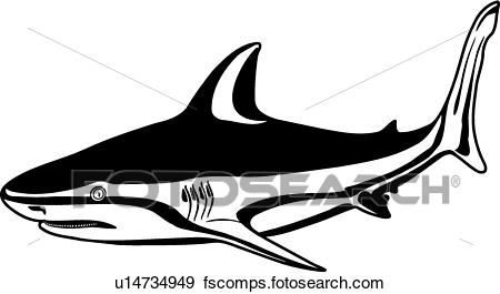 450x265 Clip Art Of Bull Shark U14734949