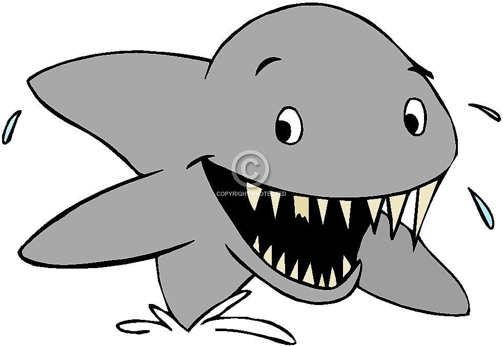 981x675 Clip Art Of Sharks