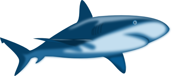 600x266 Bull Shark Clipart Great White Shark