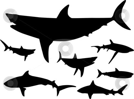 450x334 Shark Fin Clip Art Chadholtz