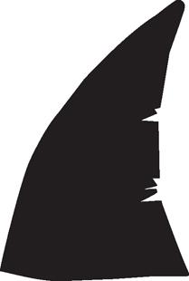 209x310 Shark Fin Decal 1 Animals Mix Animal Decals Decals