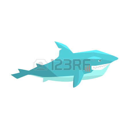 450x450 67 Grey Reef Shark Cliparts, Stock Vector And Royalty Free Grey