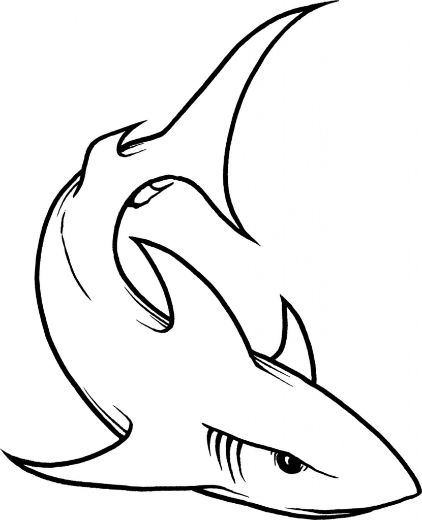830x1024 Shark Clipart Line Drawing