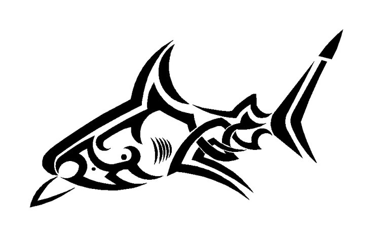 736x468 Good Outline Tribal Shark Tattoo Design