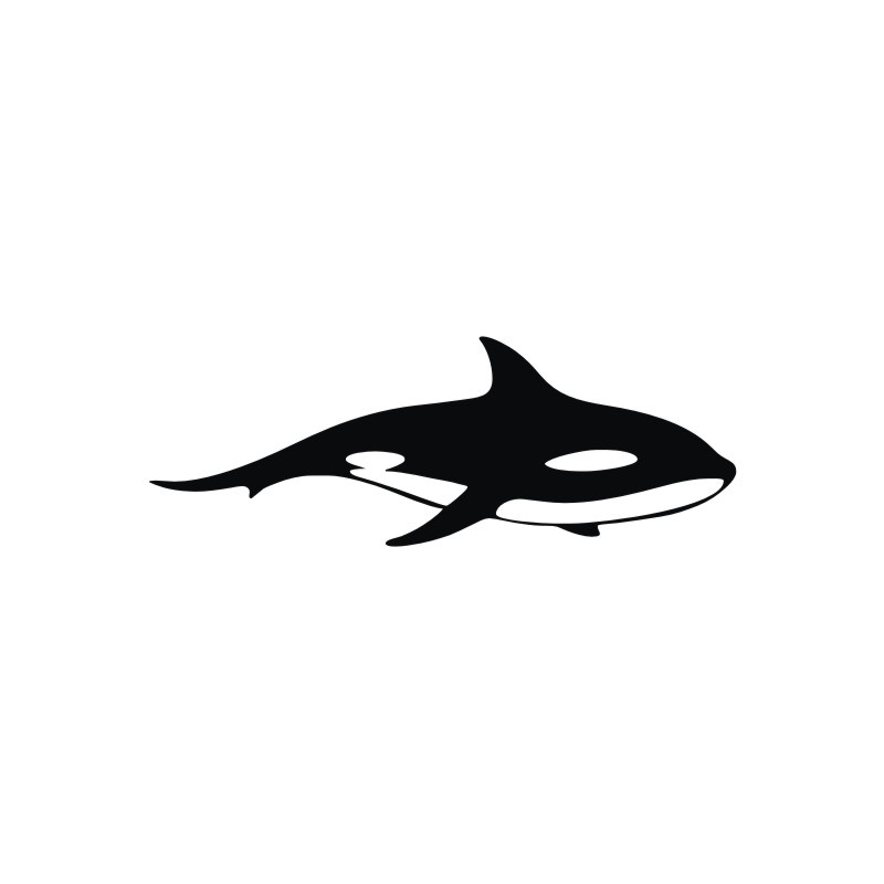 800x800 Outline Of Shark Wall Stickers Home Decoration Accessories Wall