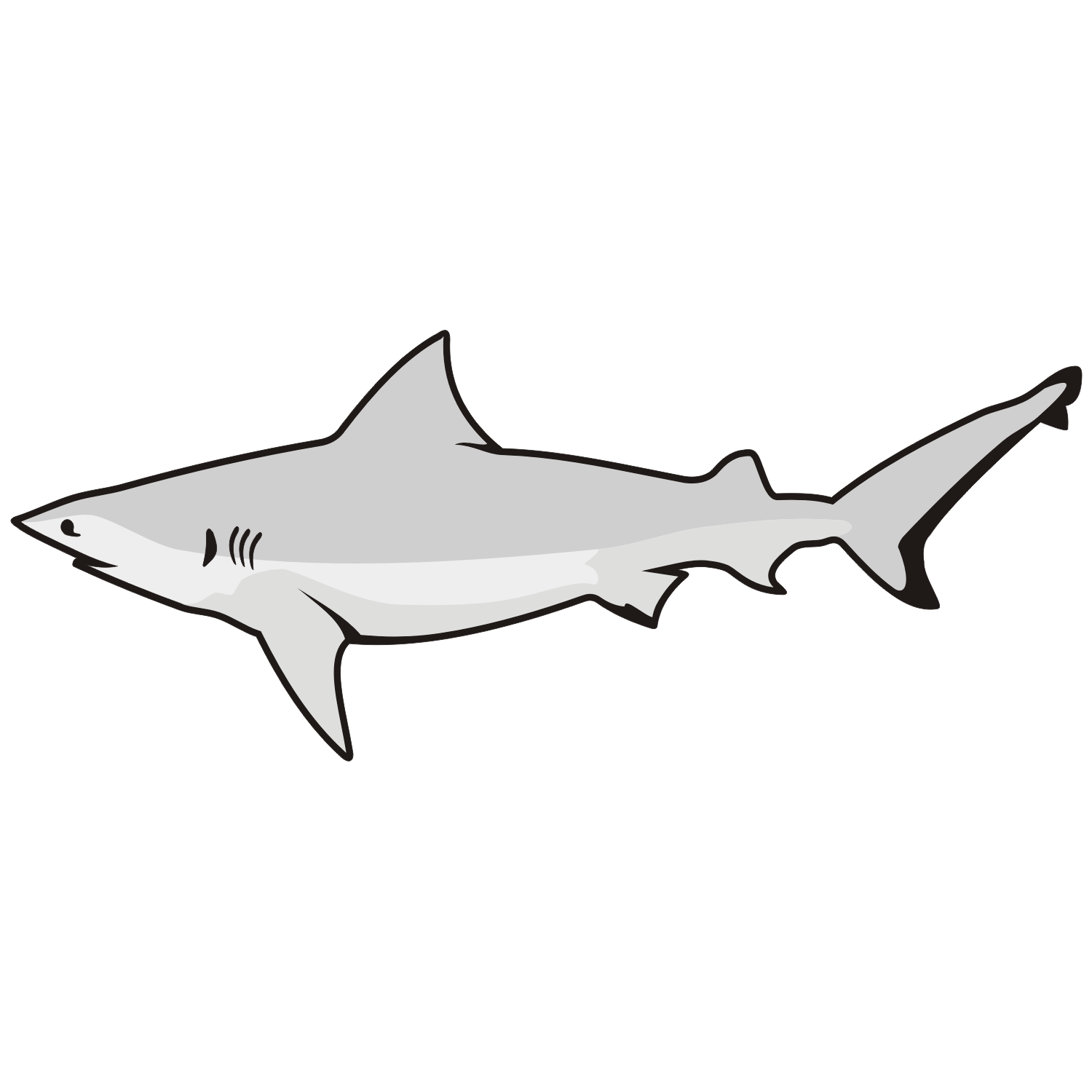 1500x1500 Shark Vector 12 An Images Hub