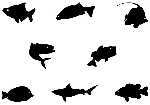 501x351 Fish Silhouette Vector Graphics In This Collection Of Silhouette