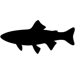263x262 Fish Silhouettes Page 2