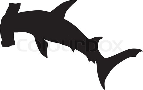 480x303 Graphics For Hammerhead Shark Graphics
