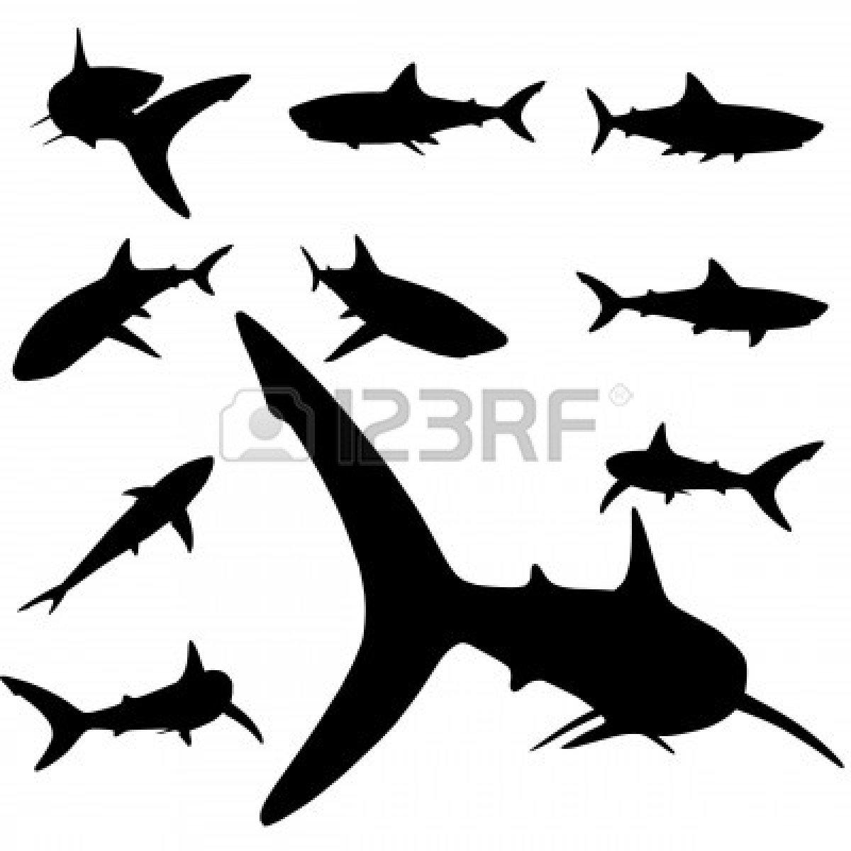 1200x1200 Hammerhead Clipart Great White Shark