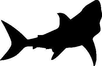 349x226 Shark Silhouette