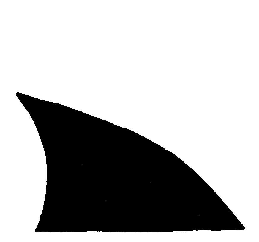 872x814 Shark Clipart Fin