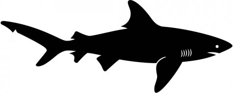475x190 Shark Clipart Silhouette