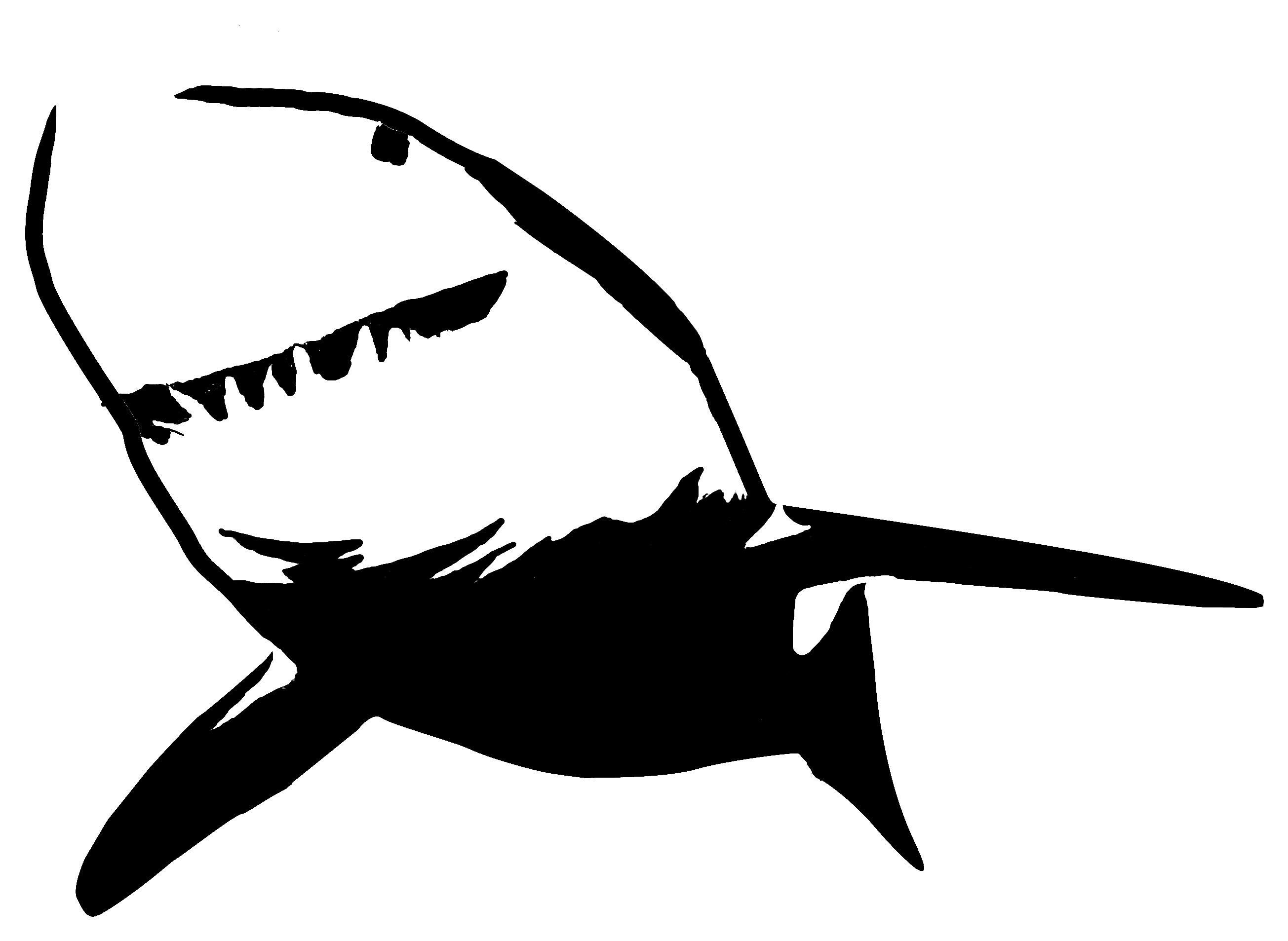 2609x1907 Shark Clipart Stencil