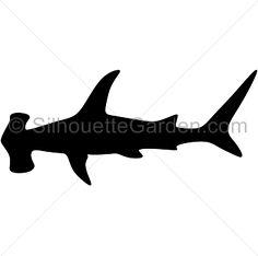 236x234 Shark Shadow Images