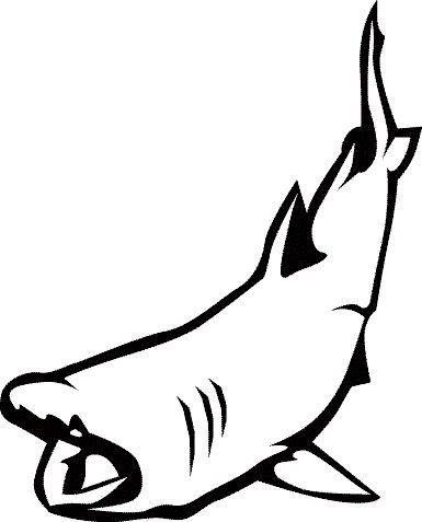 Shark Tooth Clipart
