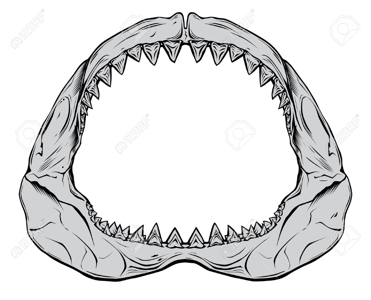 1300x1051 Teeth Clipart Jaw