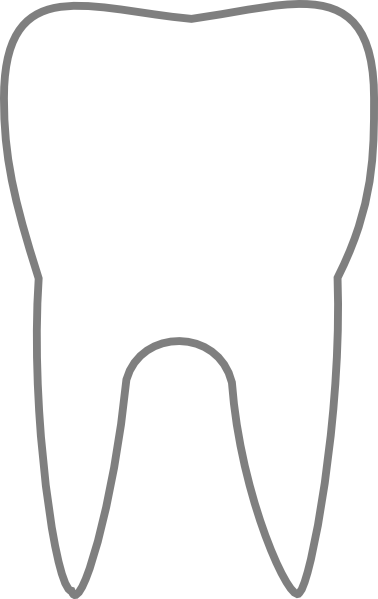 378x599 Tooth Outline Clipart