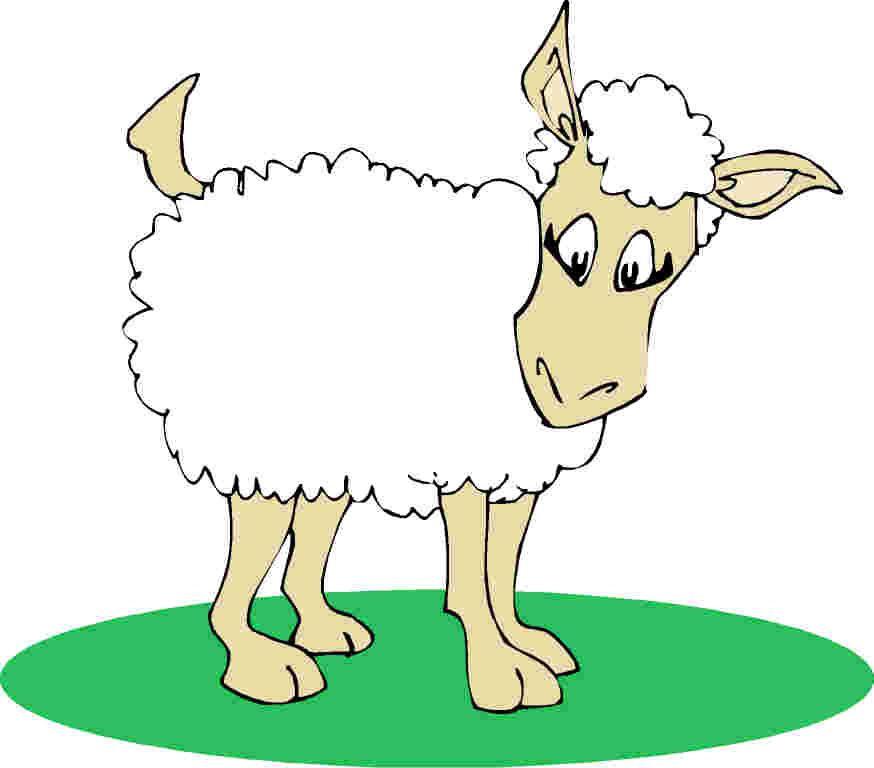 874x768 Sheep Image Clip Art