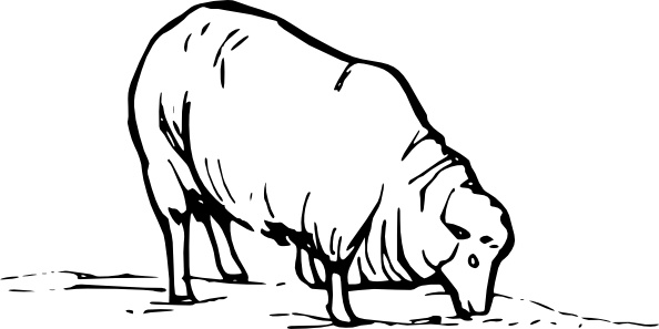 594x297 Earting Sheep Clip Art Free Vector In Open Office Drawing Svg