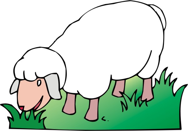 600x419 Sheep Clipart