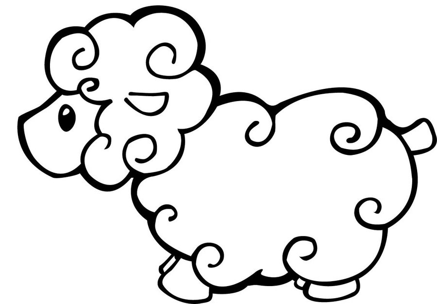 900x626 Drawn Sheep Simple