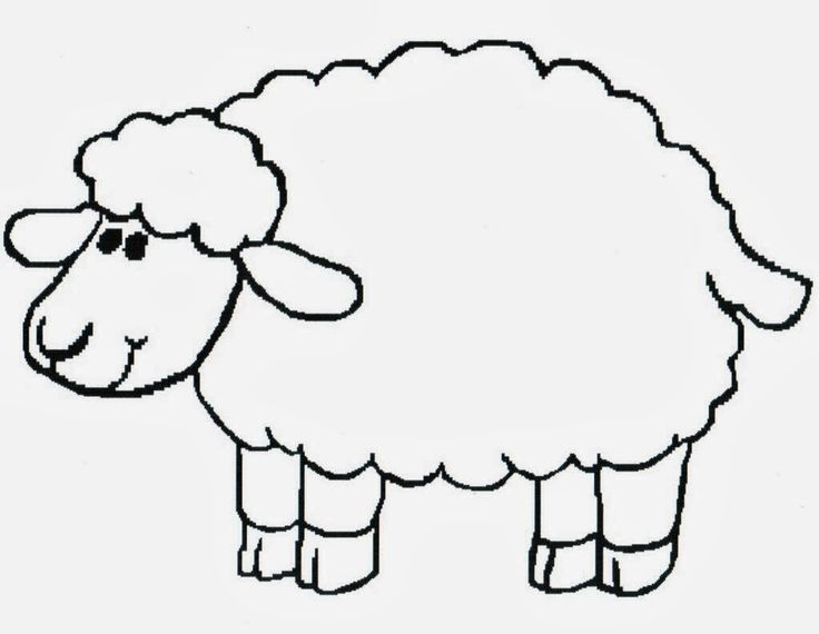 736x570 Free Printable Sheep Coloring Pages. Sheep Farm Animal Lamb