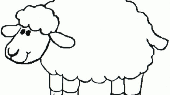 570x320 Sheep Drawing For Kids Lamb Coloring Page