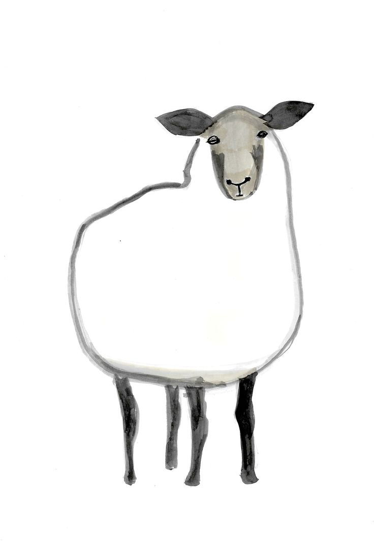 736x1100 Drawing Of A Sheep How To Draw A Sheep For Kids Sheep Easy Draw
