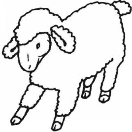268x268 Sheep Outline Coloring Pagez Coloring Pages Coloring Page