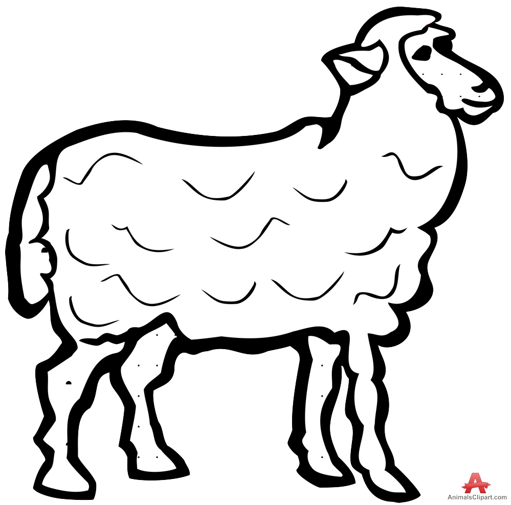 999x988 Sheep Outline Contour Drawing In Black And White Free Clipart