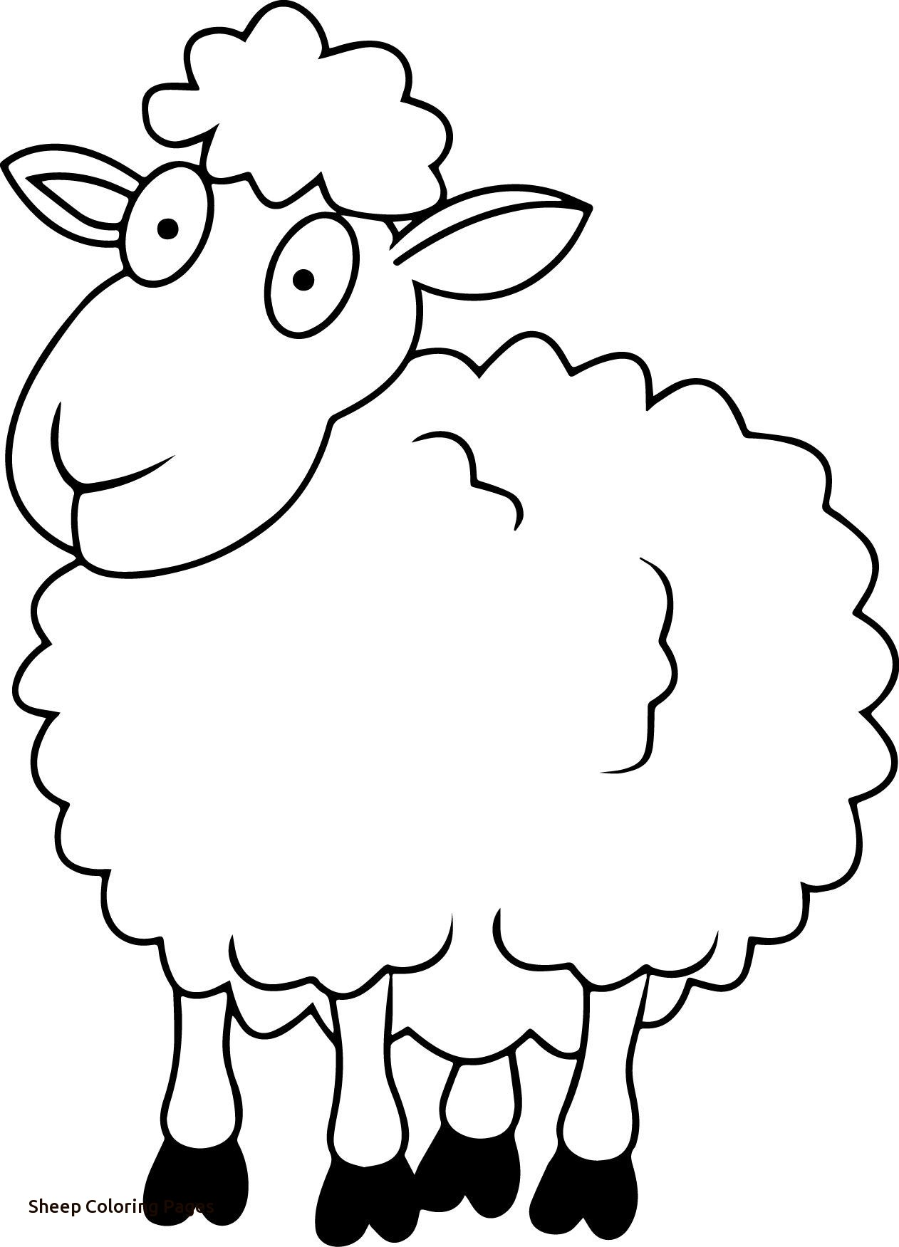 1262x1751 Best Fresh Sheep Outline Coloring Page Coloring Home With Sheep