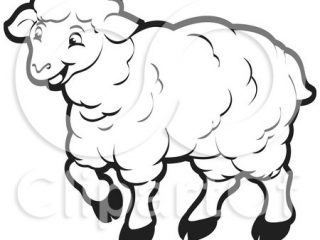 320x240 Sheep Outline Royalty Free Rf Clipart Illustration Of A Coloring