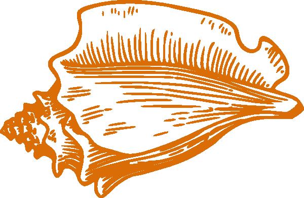 600x391 Orange Conch Shell Clip Art