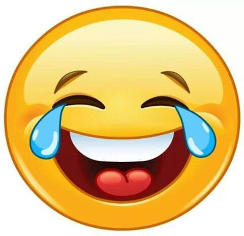 480x464 569 Best Smileys Images Smiley, Bud And Hilarious