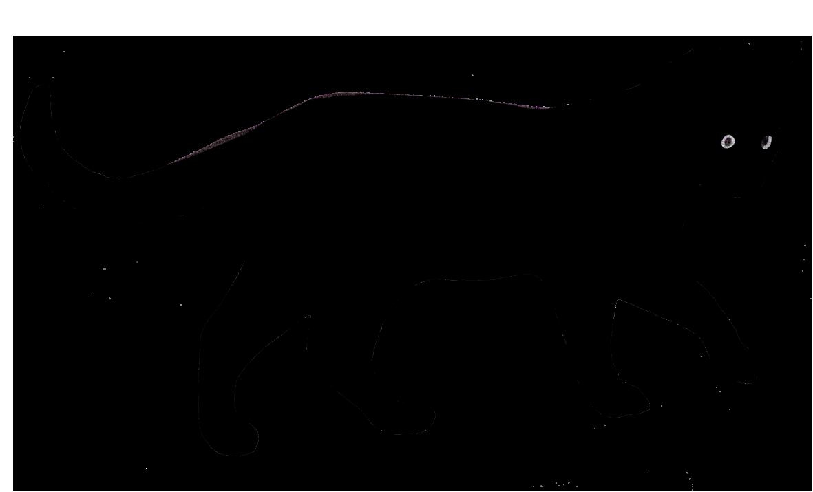 1181x715 Cat Silhouette Clip Art