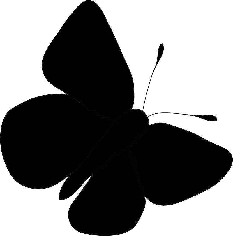 800x810 Butterfly Silhouette Clip Art