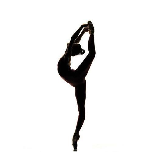500x499 Dancing Silhouette Dance Silhouettes, Dancing