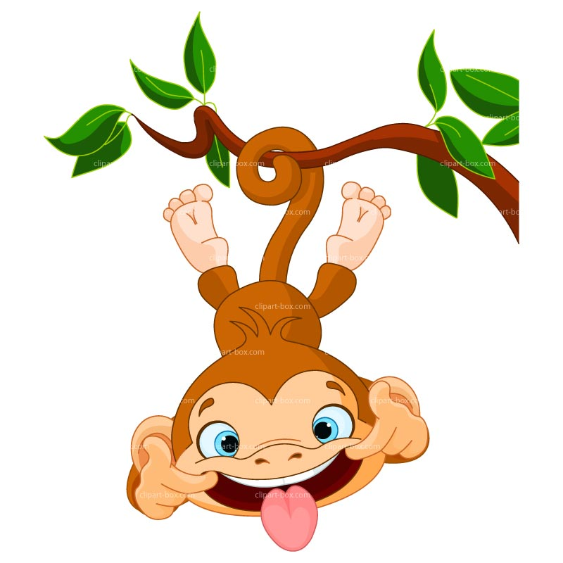 800x800 Funny Monkey Clip Art Free Clipart Images