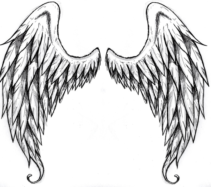 Simple Angel Wings Drawing