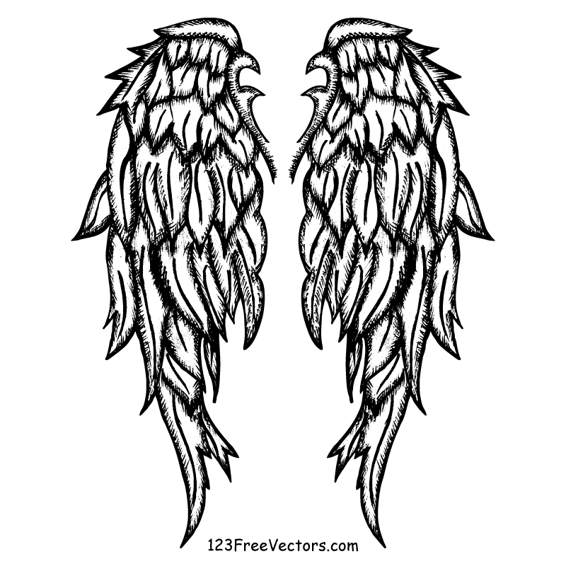 800x800 Drawn Shield Angel Wing