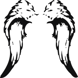 300x300 Simple Wings Clipart D12678c229d0b7dcb710d87ec9b0fc67 Angel Wings